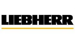 FRIGO - CONGELATEUR - CAVE A VIN LIEBHERR PAS CHER
